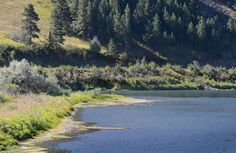 A lone angler wades the #MissouriRiver near Mountain Palace fishing access in #Montana .#MontanaMoment #FlyFIshing