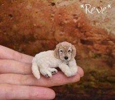OOAK Handmade Miniature Golden Retriever puppy, Dog Sculpture 1:12 by Reve #Reve