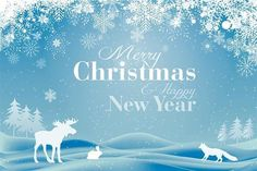 Free Christmas Backgrounds For Photoshop Christmas Apps, Christmas Tree Images, Christmas Night, Merry Christmas And Happy New Year, Christmas Pictures, Merry Xmas, Free Christmas Backgrounds, Snowflake Images, Christmas Card Template