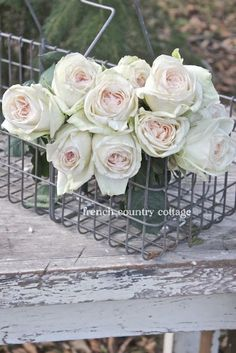 more beautiful roses from French Country Cottage