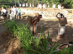 Mercado Maya - Travesía Sagrada Maya 2013 Journey, Pilgrimage, Canoe, Worship, Maya, Ocean, Horses, Animals, Cozumel Island