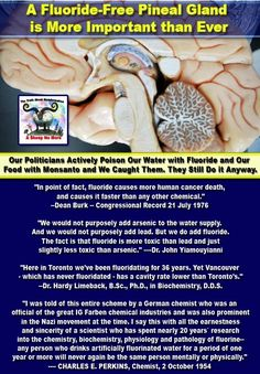 Prophecy- Starseed Bobs Perspective on Earth Changes and Our New Society: Fluoride Poisoning and Fluorosidic Acid , Fluoride Dangers,Fluoride Kills- Pineal Gland Calcification