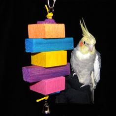 Conure Palm Box Forager Parrot Toy Cockatiel Quaker