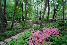 Shade Gardens Design Ideas, Pictures, Remodel and Decor