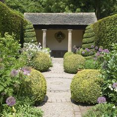 York Gate garden, Leeds. Topiary and more.