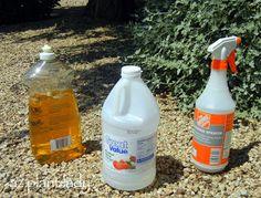 RAMBLINGS FROM A DESERT GARDEN....: DIY Weed-Killer: Vinegar & Soap
