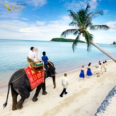 #تجربه آغاز #زندگی مشترک با #آرامش ناب سواحل #تایلند در ساحلی جادویی با #شن هایی نرم و آبی گرم  #سفر #ماهعسل #گردشگری #تابستان #عروسی #جوان #دریا #ساحل #تفریح  #AmazingThailand2015