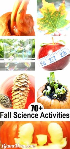Fall science activities for kids: pumpkins, leaves, apples, pine cones, sun, moon, stars, wind, rain, … and more. Wonderful STEM resource for science classroom, homeschool or after school enrichment.