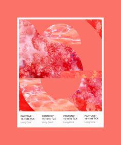 Coral Paint Colors, Coral Colour Palette, Coral Color, Coral Pink, Cor Coral, Pantone Color, Pantone Colour Palettes, Color Of The Year, Color Combos