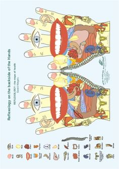 Reflexology on the back of the Hands