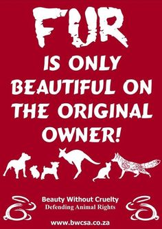 Animal rights, anti-fur