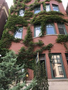 Brick house with ivy Ivy, Brick, Mansions, House Styles, Home Decor, Decoration Home, Manor Houses, Room Decor, Villas