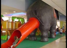 That awkward moment when the elephant poops out a child...