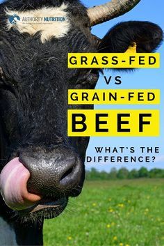 Grass-Fed vs. Grain-Fed Beef Survey?