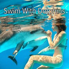 Bucket list: travel somewhere tropical to swim with dolphins.