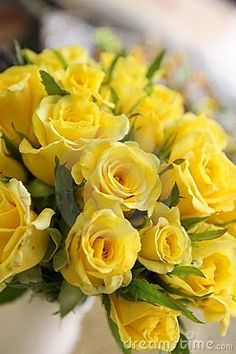 Bouquet of beautiful yellow roses