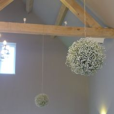 Hanging balls of gypsophila, mixed in with the paper lanterns