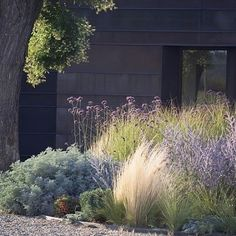"""822 Likes, 14 Comments - Jannice Wistrand (@addsimplicity) on Instagram: """"På bloggen☝️ 5 steg till en mer harmonisk och vacker trädgård med Feng Shui! #trädgård…"""""""