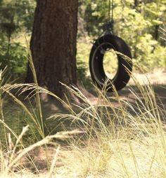 -Reminds me of the tire swing at Gram-Gram's house. I was always afraid to swing on it in case I'd fall.