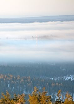 Six o'clock in the morning,  Ruka Kuusamo Finland Photo Aili Alaiso