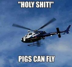 Check out: Funny Memes - Pigs CAN fly! One of our funny daily memes selection. We add new funny memes everyday! Cop Jokes, Cops Humor, Police Humor, Funny Police, Police Officer, Police Wife Life, Joke Of The Day, I Love To Laugh, Adult Humor