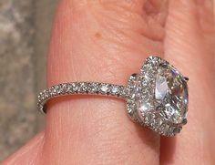 harry winston, my bff Harry Winston, Thing 1, Dream Ring, Diamond Are A Girls Best Friend, Diamond Engagement Rings, Halo Engagement, Diamond Rings, Diamond Jewelry, Jewelry Box