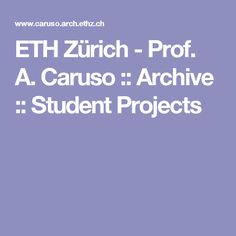 ETH Zürich - Prof. A. Caruso :: Archive :: Student Projects