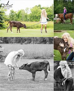 senior pictures in the farm with cows by Rebecca Houlihan Photography