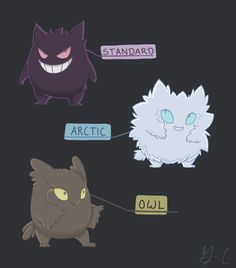 pokemon variants | Tumblr