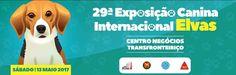 XXIX Exposição Canina Internacional de Elvas | Portal Elvasnews