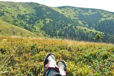 Somewhere in Slovakia - Liptopv - Prašivá - blueberry and cranberry - ♥ - good memory - sunny - happy :)