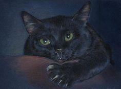 db_Darya_Veretshagina_Magic_cat1.jpg