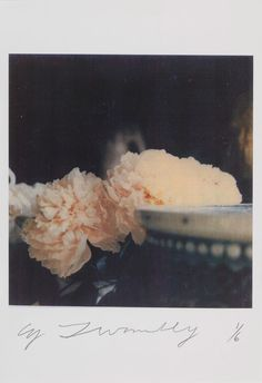 CY TWOMBLY Peonies, Bassano in Teverina, 1980 Color dry-print Framed: 18 3/4 x 17 1/2 inches (47.6 x 44.5 cm) Ed. 1/6