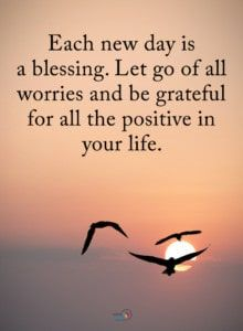 These twenty positiveness quotes can brighten your mood even on a gloomy day. Read words of wisdom anytime you feel you need a boost. Faith Quotes, Wisdom Quotes, True Quotes, Words Quotes, Quotes To Live By, Motivational Quotes, Inspirational Quotes, Qoutes, Spiritual Quotes