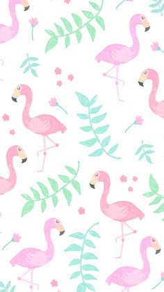 Wallpaper iphone flamingo wallpaper, wallpaper iphone cute, wallpaper for your phone, girl wallpaper Cute Backgrounds For Phones, Tumblr Backgrounds, Cute Wallpaper For Phone, Cute Wallpaper Backgrounds, Girl Wallpaper, Funny Wallpapers, Wallpaper Downloads, Iphone Wallpaper, Pink Unicorn Wallpaper