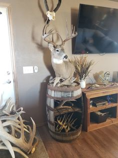 Duck Hunting Decor, Hunting Home Decor, Deer Hunting, Hunting Stuff, Deer Mount Decor, Deer Decor, Taxidermy Decor, Taxidermy Display, Movie Rooms