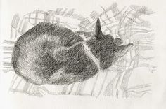 day 7 - All Black by jane Gardiner - http://glasgowpainter.blogspot.co.uk/2015/02/all-black-day-7.html