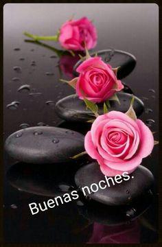 Solamente Rosas