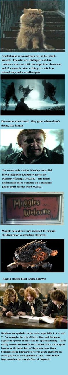 Interesting Harry Potter facts.