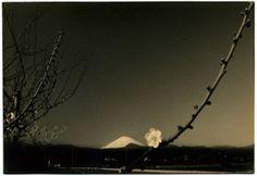 masao yamamoto landscape - Google Search