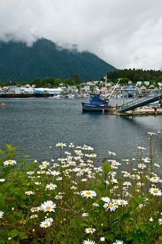 Sitka, Alaska by Bachspics, via Flickr