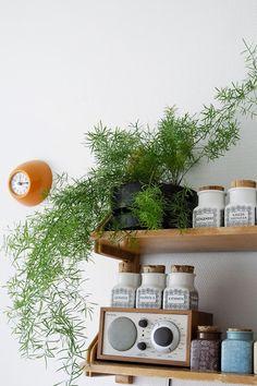 Kirppisrakkautta Planter Pots