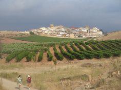 Hilltop Village of Cirauqui