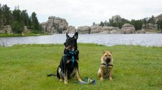 Hiking with dogs at Sylvan Lake in Custer State Park - Custer, SD