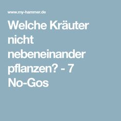 Which herbs do not plant next to each other? - 7 no-gos Welche Kräuter nicht nebeneinander pflanzen? – 7 No-Gos Which herbs do not plant next to each other? – 7 no-gos