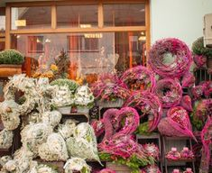 Vence, Floral Wreath, Gardening, Wreaths, Plants, Home Decor, Fall Season, Autumn, Floral Crown