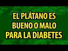 5 consejos para recuperar tu pancreas naturalme nte - YouTube