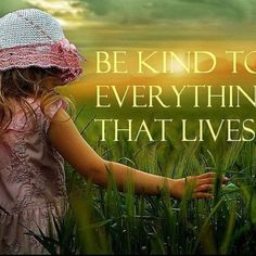I believe children should learn how to be respectful and thankful to the environment.