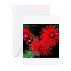 Red chrysanthemums Greeting Cards on CafePress.com