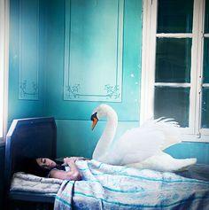 The Dream Lake by Lara Zankoul